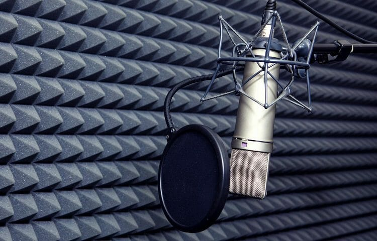 pop filter mounted on microphone