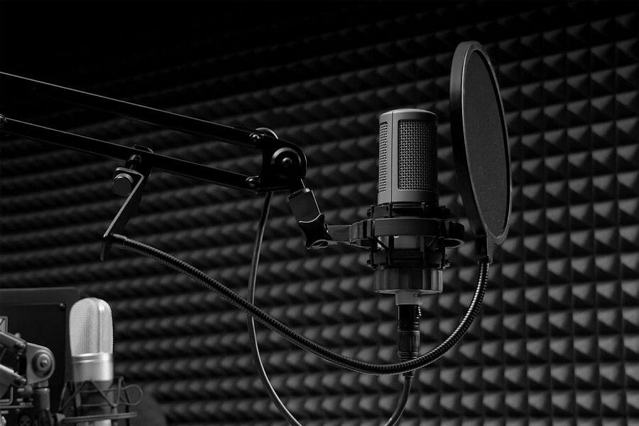pop filter and how it functions